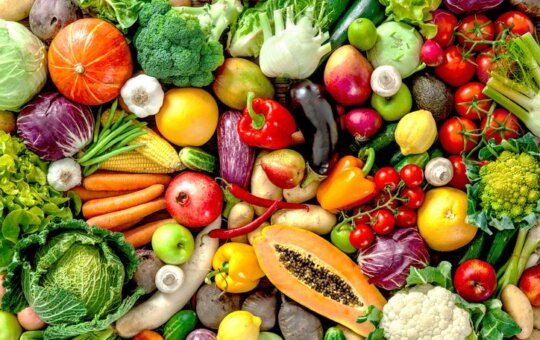 13 Foods That Boost and Improve Your Immune System
